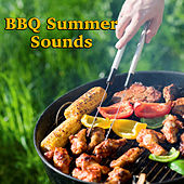 BBQ Summer Sounds von Various Artists