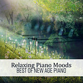 Relaxing Piano Moods (Best of New Age Piano) de Various Artists