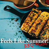 Feels Like Summer! BBQ Music by Various Artists