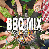 BBQ Mix von Various Artists