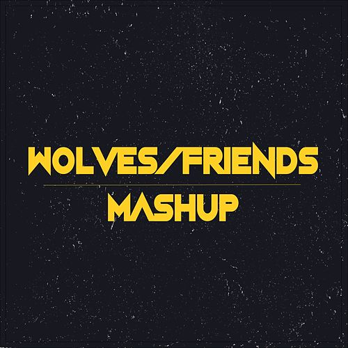 Friends / Wolves (Jelena Mashup) de Cimorelli