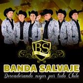 Descaderando Viejos por Todo Chile by La Banda Salvaje