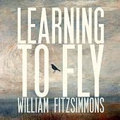 Learning to Fly von William Fitzsimmons