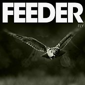 Fly by Feeder