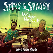 Don't Make Me Wait (Dave Audé Remix) by Sting & Shaggy