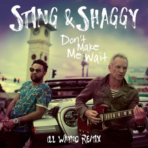 Don't Make Me Wait (iLL Wayno Remix) by Shaggy