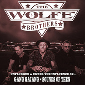 Sounds Of Then by The Wolfe Brothers