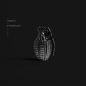 Stardust (Remixes) de IAMX