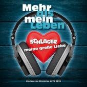 Mehr als mein Leben - Schlager meine große Liebe - Die besten Discofox Hits 2018 von Various Artists