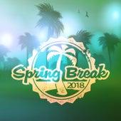 Spring Break 2018 fra Various Artists