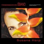 Fandangos de Ébano by Susana Harp