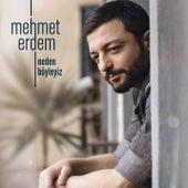 Neden Böyleyiz von Mehmet Erdem