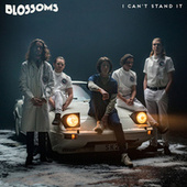 I Can't Stand It von Blossoms