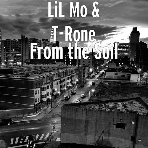 From the Soil by Lil' Mo