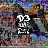 D3 Canta Charlie Brown Jr. de Acústico D3