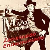 Zapateado Endemoniado by Marco Flores y La Jerez