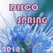 Disco Spring 2018 von Various Artists