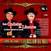 Coleccion De Oro, Vol. 3 by Los Cadetes De Linares