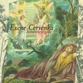 Somewhere Gone by Exene Cervenka