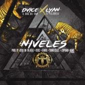 Niveles by Dvice and Lyan