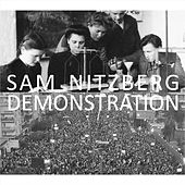 Demonstration by Sam Nitzberg