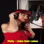 Liebe dein Leben by Melly