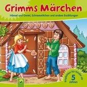 Grimms Märchen (Hänsel und Gretel, Schneewittchen und andere Erzählungen) by Brüder Grimm