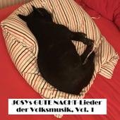 Josys GUTE NACHT Lieder der Volksmusik, Vol. 1 by Various Artists