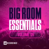 Big Room Essentials, Vol. 09 - EP by Various Artists