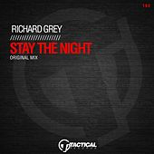 Stay the Night by Richard Grey