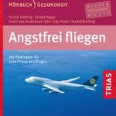 Angstfrei fliegen (Mit Strategien für jede Phase des Fluges) by Rudolf Krefting
