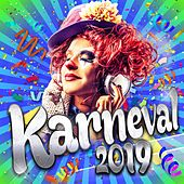 Karneval 2018 von Various Artists
