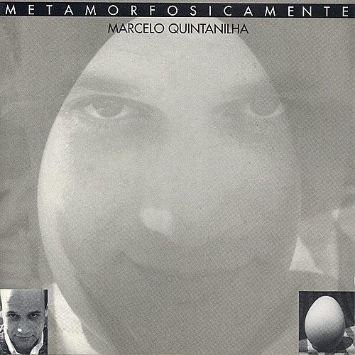 Metamorfosicamente by Marcelo Quintanilha