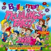 Ballermann Frühlingsparty 2018 von Various Artists