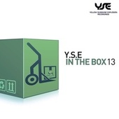 Y.S.E. In the Box, Vol. 13 by Various Artists