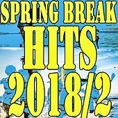 Spring Break Hits 2018/2 von Various Artists