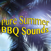 Pure Summer BBQ Sounds by Various Artists