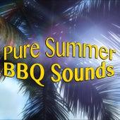 Pure Summer BBQ Sounds de Various Artists