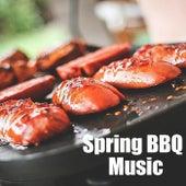 Spring BBQ Music von Various Artists