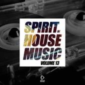 Spirit of House Music, Vol. 13 von Various Artists