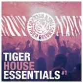 Tiger House Essentials, Vol. 1 de Various Artists