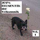 Josys BLUMEN-Hits der Volksmusik, Vol. 1 by Various Artists