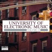 University of Electronic Music, Vol. 13 de Various Artists