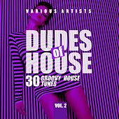 Dudes of House (30 Groovy House Tunes), Vol. 2 de Various Artists