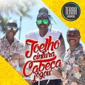 Joelho Cintura Cabeça e Jogou (Versão Carnaval) de Terra Samba