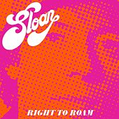 Right to Roam by Sloan