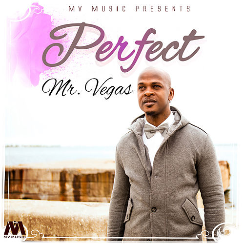 Perfect - Single by Mr. Vegas