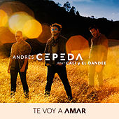 Te Voy a Amar by Andrés Cepeda