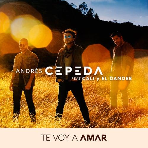 Te Voy a Amar de Andrés Cepeda