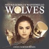 Wolves (Owen Norton Remix) de Marshmello